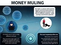 money mules