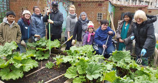 cranbrook-garden